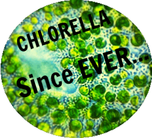 Chlorella is a powerful micro alga on Earth since pre-cambrian times.