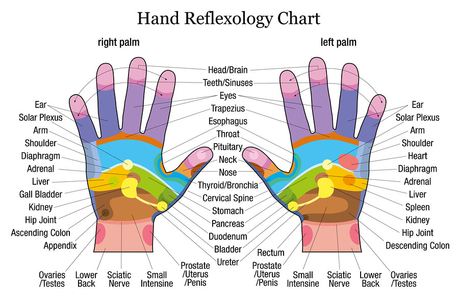 Experience hand reflexology benefits (and much more) with our Body -or Face- Meridians Massager Professional Grade