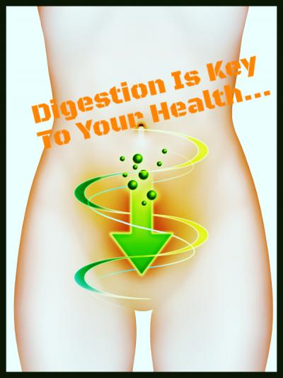 Digestion is key to your health